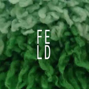 FELD (DE)